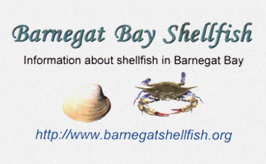 Barnegat Bay Shellfish